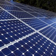 New Solar Array Will Provide a Third of Campus Power