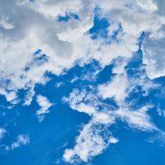 Carlton Ellis–The Benefits of a Holistic Life